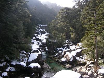 Sawatubasirimg0223_2