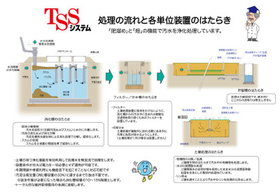 Tsstss_2
