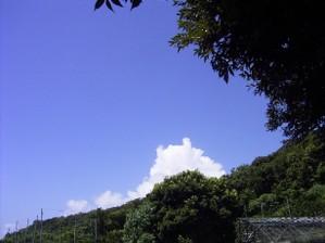 Natu0607sawa_074